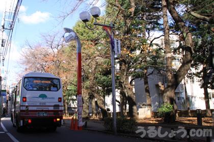 去りゆく古き街路灯、新たな姿で誕生 ウルトラマン街路灯