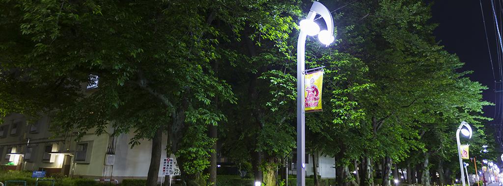 夏2(新緑の桜の木にウルトラマン街路灯)