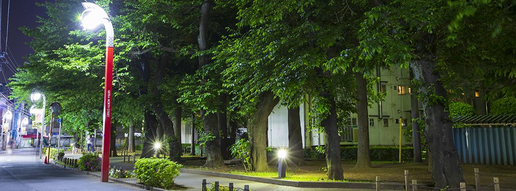 夏1(新緑の桜の木にセブン街路灯)