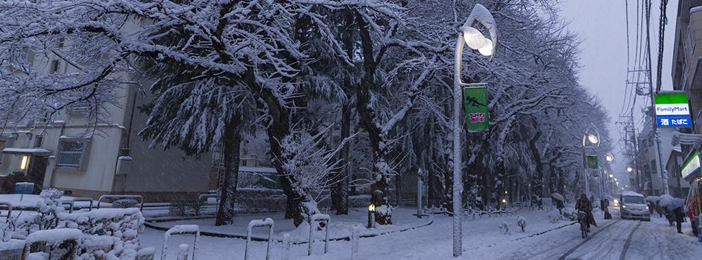 冬1(1月)