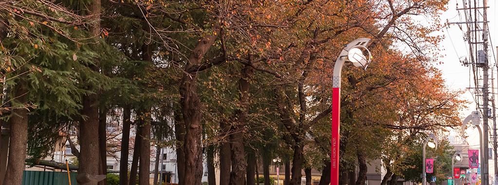秋3(セブン街路灯と紅葉)